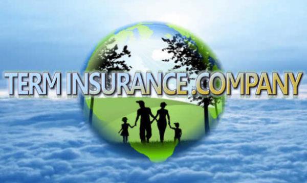 Term Insurance company